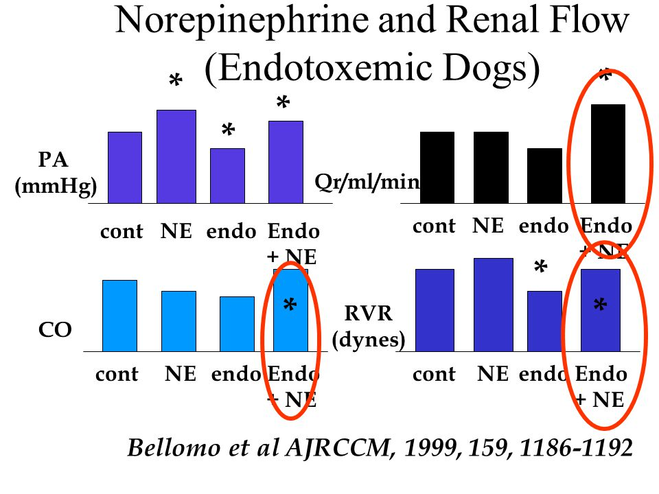 Norepinephrine and Renal Flow (Endotoxemic Dogs) Bellomo et al AJRCCM, 1999, 159, 1186-1192 PA (mmHg) CO RVR (dynes) Qr/ml/min contNEendoEndo + NE con