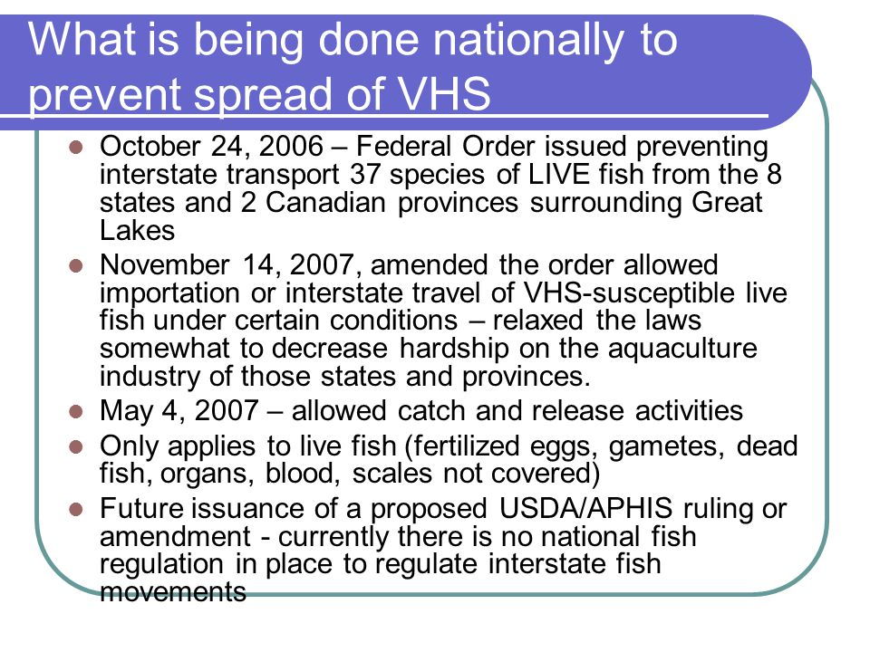What is being done nationally to prevent spread of VHS October 24, 2006 – Federal Order issued preventing interstate transport 37 species of LIVE fish from the 8 states and 2 Canadian provinces surrounding Great Lakes November 14, 2007, amended the order allowed importation or interstate travel of VHS-susceptible live fish under certain conditions – relaxed the laws somewhat to decrease hardship on the aquaculture industry of those states and provinces.