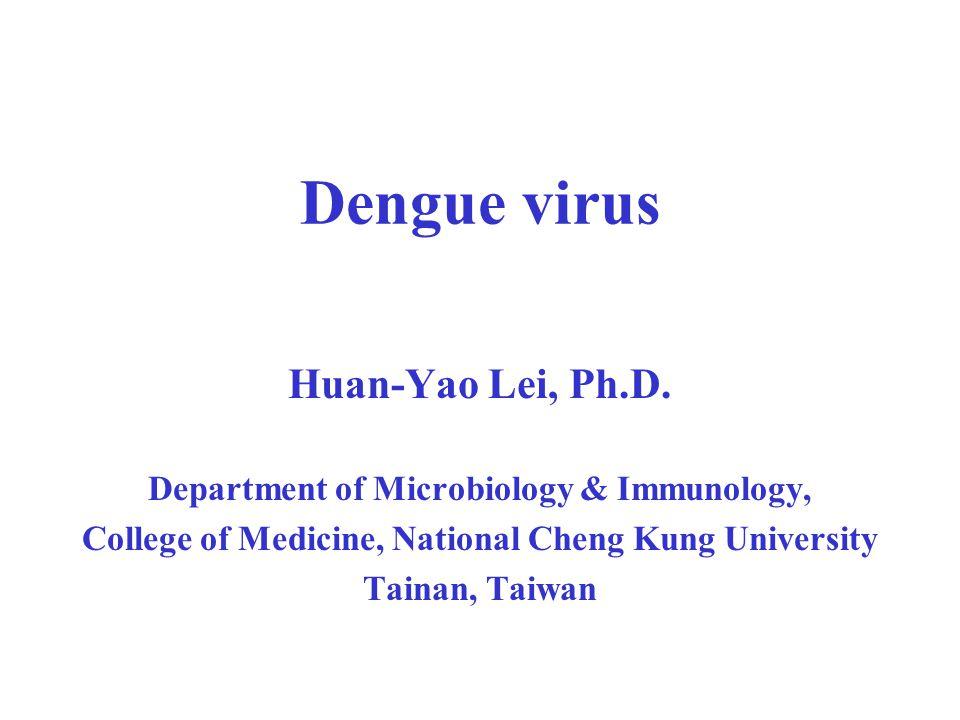Dengue virus infection: Dengue epidemiology Disease control and surveillance Pathogenesis (Immunopathogenesis) Antibody-dependent enhancement Development and challenge of Dengue vaccine Development of anti-dengue virus drug ?