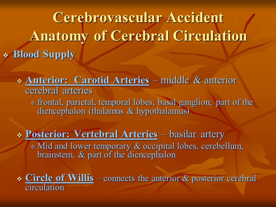 Cerebrovascular Accident Treatment Goals  Prevention  Drug Therapy  Surgical Therapy  Rehabilitation