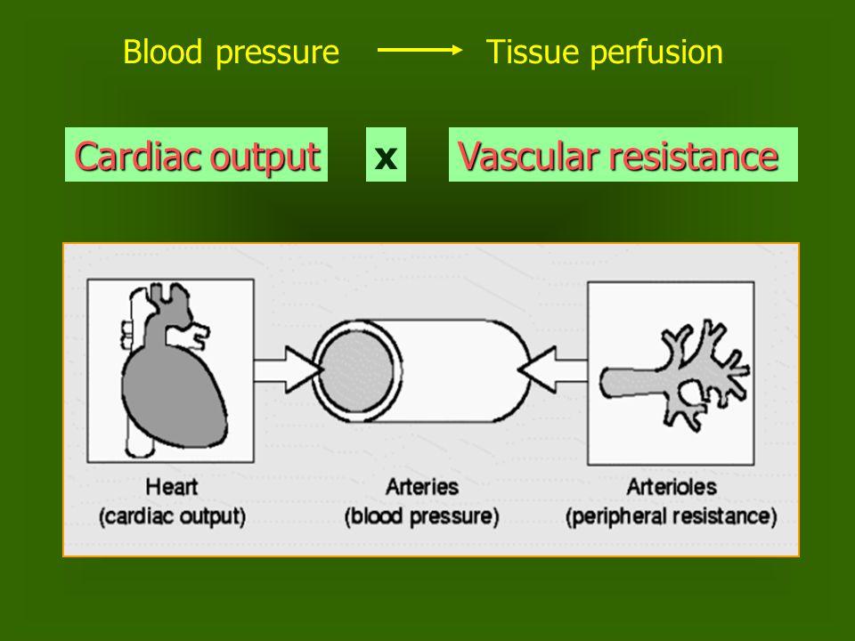 Blood pressureTissue perfusion Cardiac output x Vascular resistance
