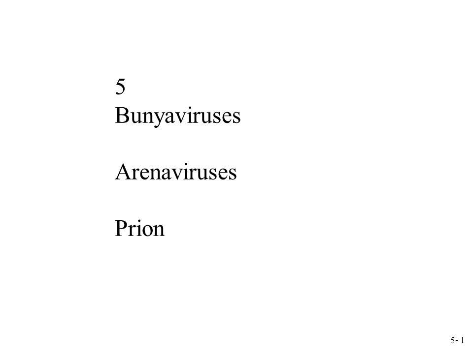 5- 1 5 Bunyaviruses Arenaviruses Prion