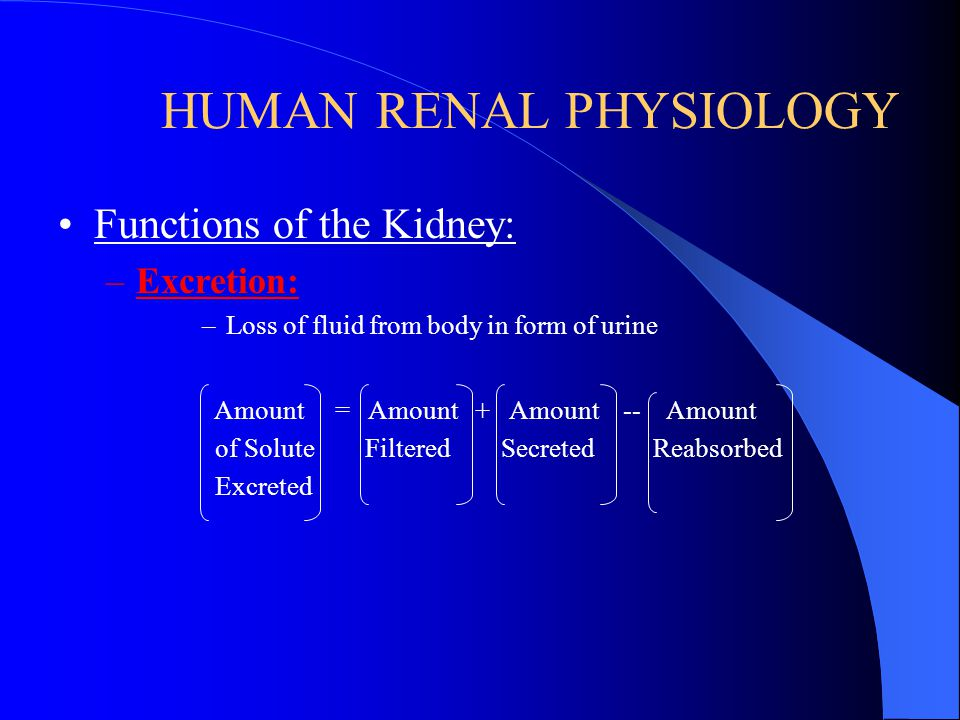 HUMAN RENAL PHYSIOLOGY Functions of the Kidney: –Secretion: –Material added to lumen of kidney from blood –Active transport (usually) of toxins and fo