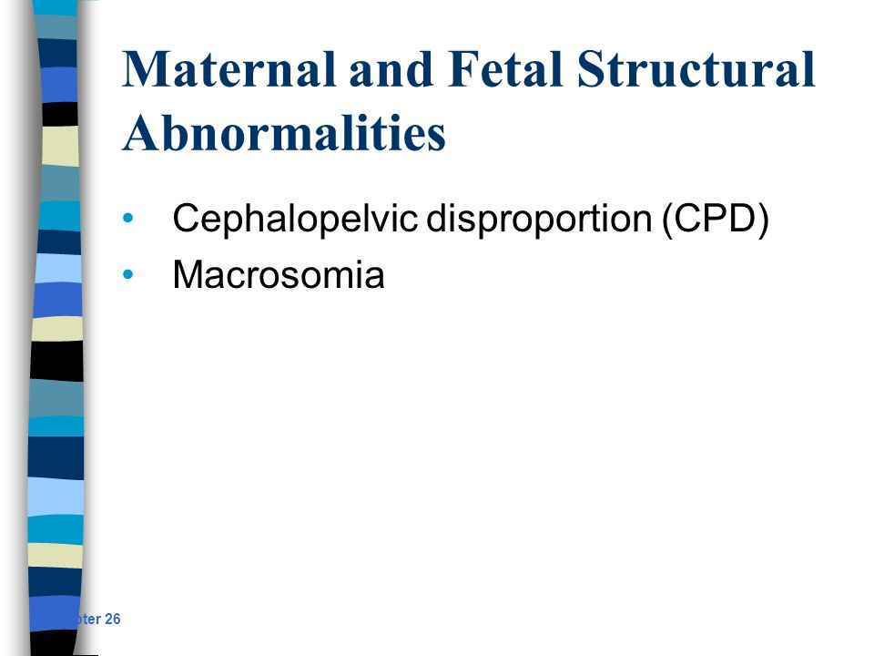 Maternal and Fetal Structural Abnormalities Cephalopelvic disproportion (CPD) Macrosomia Chapter 26