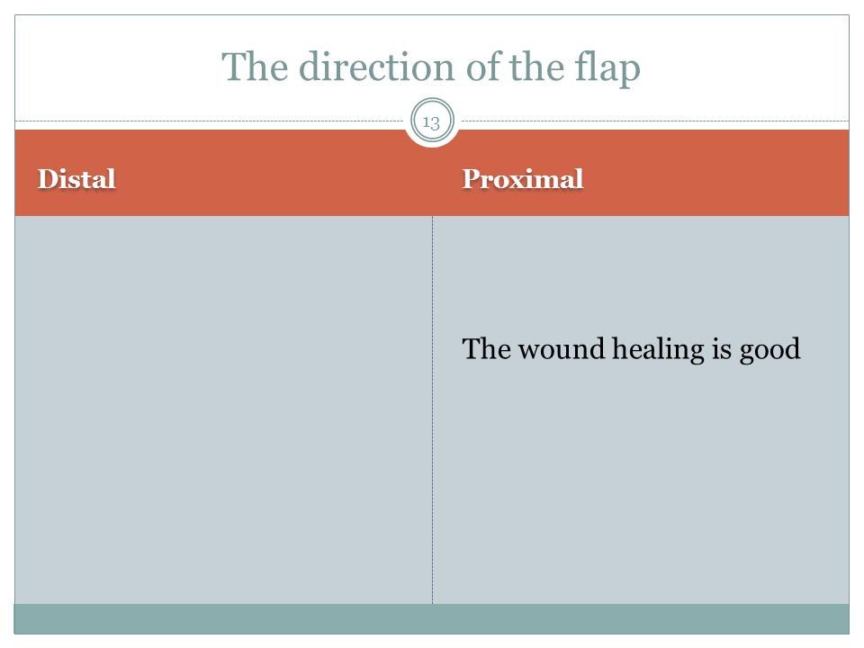 Distal Proximal The wound healing is good The direction of the flap 13