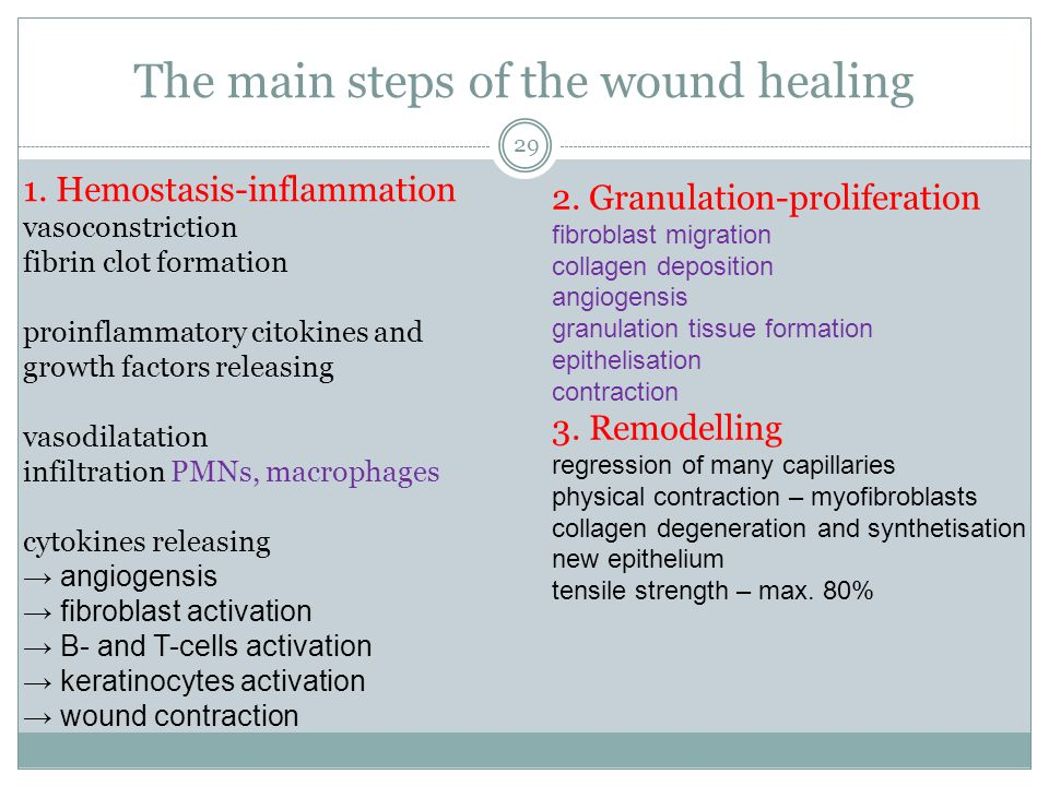 The main steps of the wound healing 1. Hemostasis-inflammation vasoconstriction fibrin clot formation proinflammatory citokines and growth factors rel