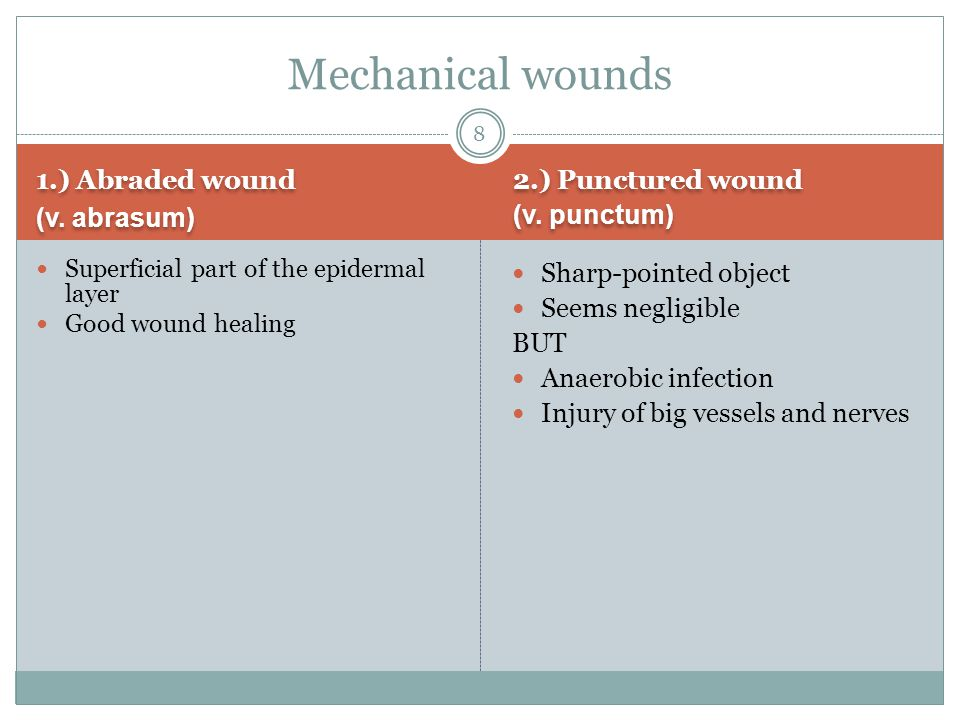 1.) Abraded wound (v. abrasum) 1.) Abraded wound (v. abrasum) 2.) Punctured wound (v. punctum) 2.) Punctured wound (v. punctum) Superficial part of th