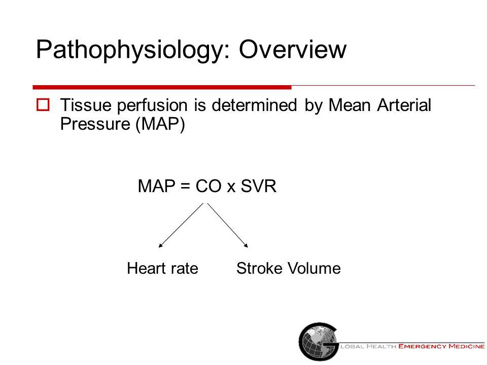 Vasopressors in Cardiogenic Shock  Norepinephrine  Dopamine  Epinephrine  Phenylephrine