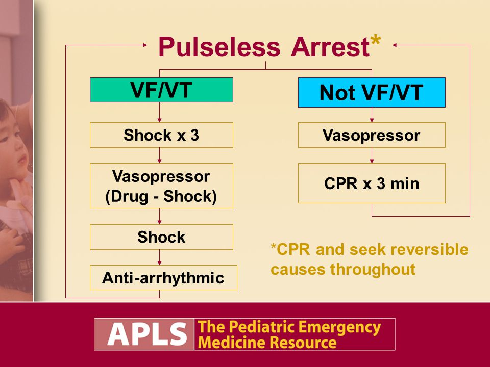 Pulseless Arrest * VF/VT Not VF/VT Anti-arrhythmic Vasopressor (Drug - Shock) CPR x 3 min Shock x 3 Shock Vasopressor *CPR and seek reversible causes