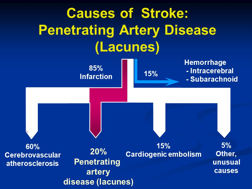 Causes of Stroke: Penetrating Artery Disease (Lacunes) 85% Infarction 60% Cerebrovascular atherosclerosis 20% Penetrating artery disease (lacunes) 15%