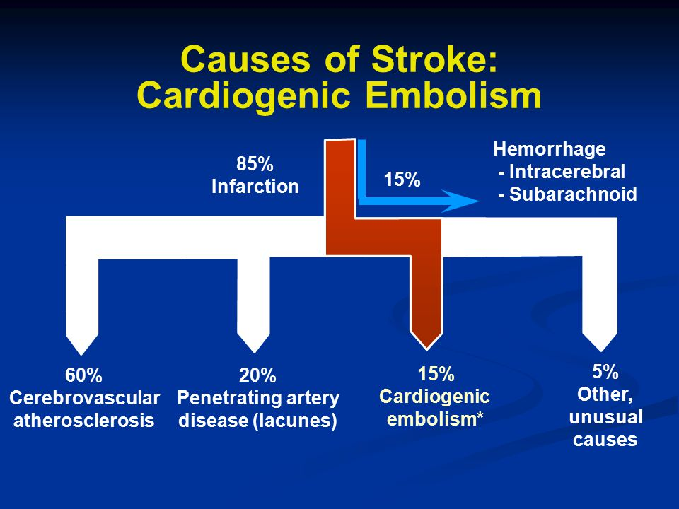 Causes of Stroke: Cardiogenic Embolism 85% Infarction 60% Cerebrovascular atherosclerosis 20% Penetrating artery disease (lacunes) 15% Cardiogenic emb