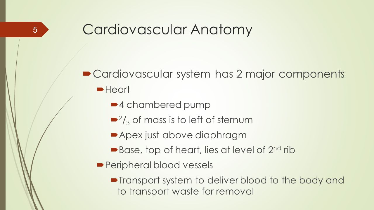 Variant Angina  Occurs when vessel is in spasm  Very painful  Often occurs at night  Controlled with medication 16
