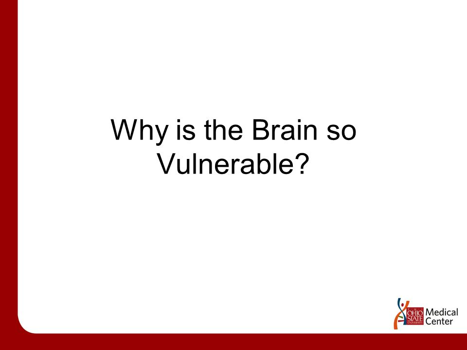Why is the Brain so Vulnerable