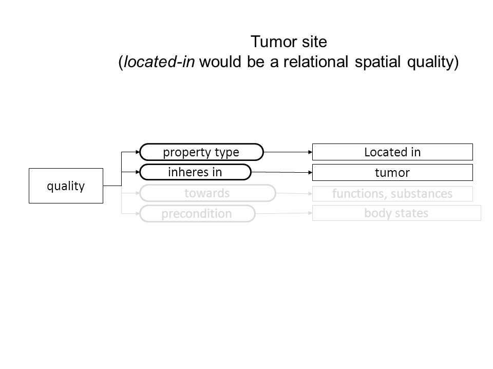 quality property type Located in Tumor site (located-in would be a relational spatial quality) tumor inheres in towards functions, substances precondition body states