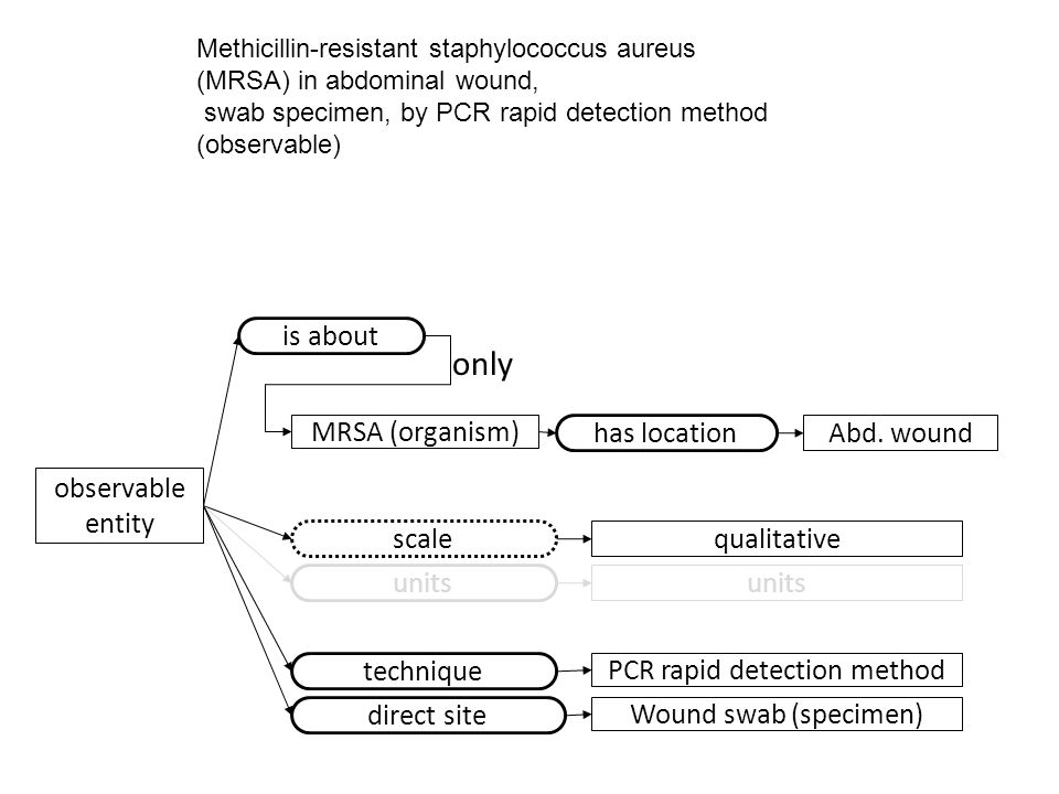 observable entity scale qualitative Methicillin-resistant staphylococcus aureus (MRSA) in abdominal wound, swab specimen, by PCR rapid detection method (observable) units technique PCR rapid detection method direct site Wound swab (specimen) MRSA (organism) is about has location Abd.