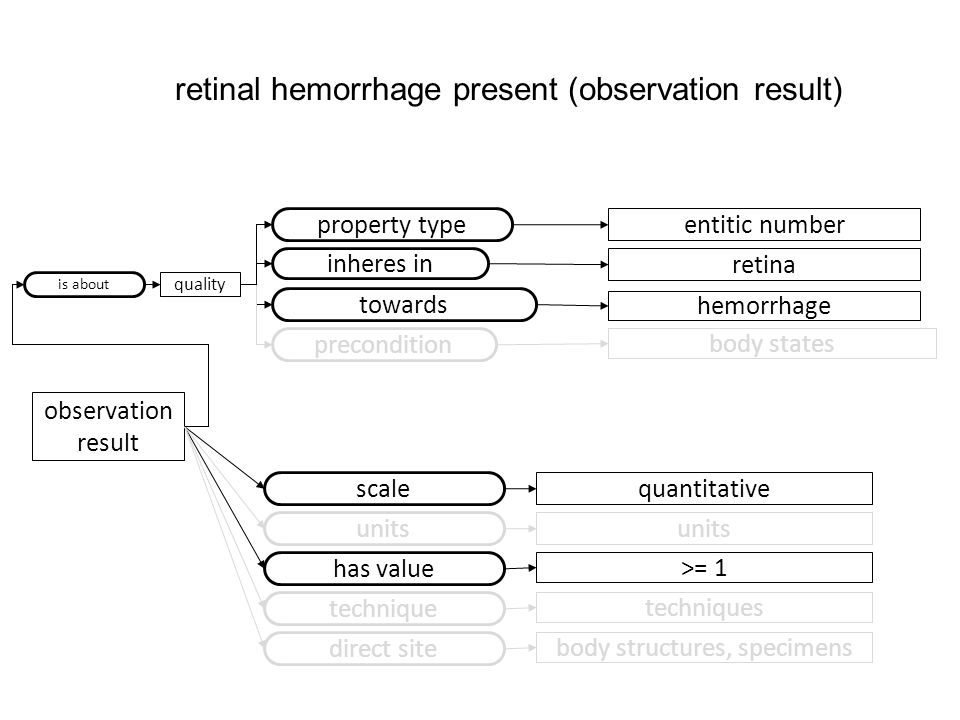observation result property type entitic number scale quantitative has value >= 1 retinal hemorrhage present (observation result) retina inheres in towards hemorrhage units technique techniques precondition body states direct site body structures, specimens is about quality