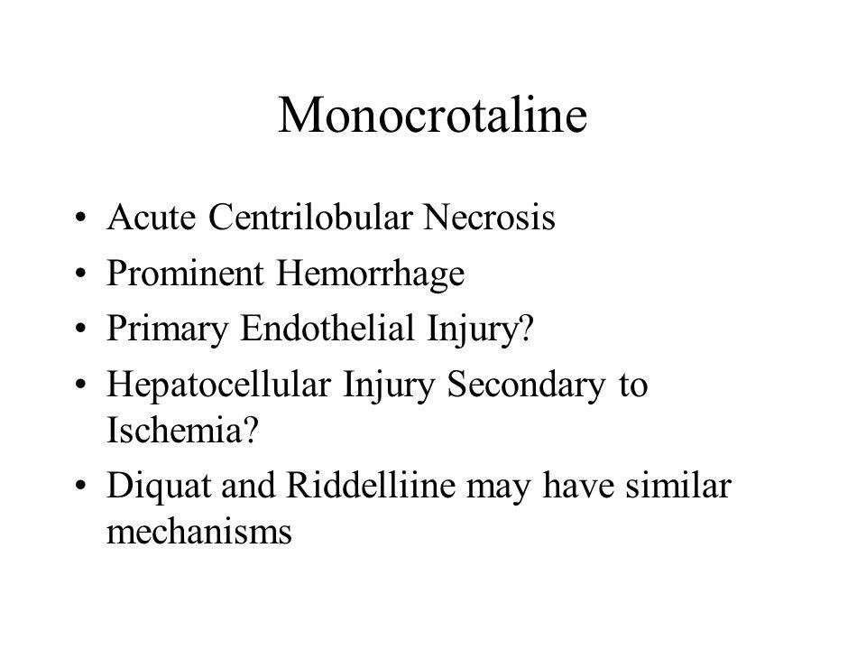 Monocrotaline Acute Centrilobular Necrosis Prominent Hemorrhage Primary Endothelial Injury? Hepatocellular Injury Secondary to Ischemia? Diquat and Ri