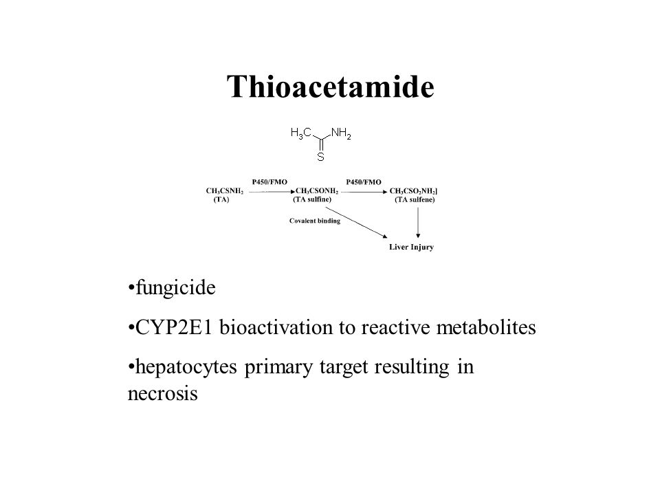 Thioacetamide fungicide CYP2E1 bioactivation to reactive metabolites hepatocytes primary target resulting in necrosis