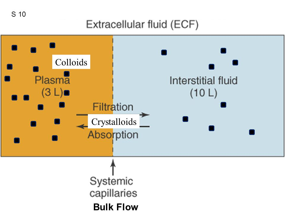 Figure 12.41 Crystalloids Colloids Bulk Flow S 10