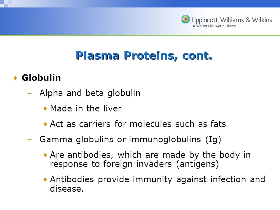 Plasma Proteins, cont. Globulin –Alpha and beta globulin Made in the liver Act as carriers for molecules such as fats –Gamma globulins or immunoglobul