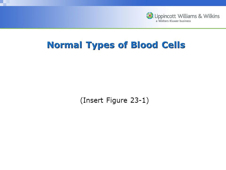 Normal Types of Blood Cells (Insert Figure 23-1)