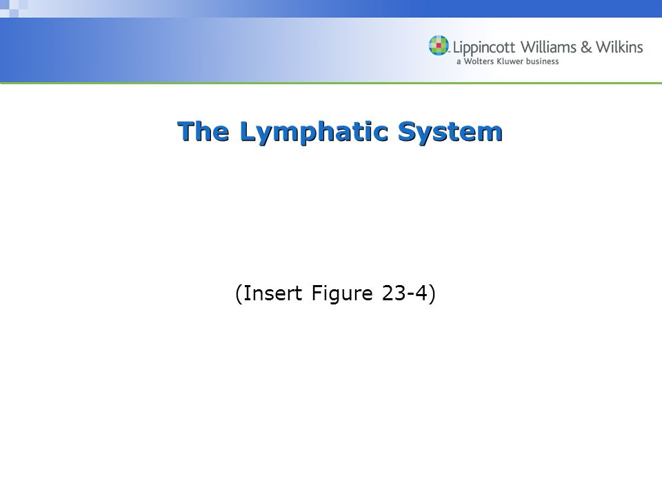 The Lymphatic System (Insert Figure 23-4)
