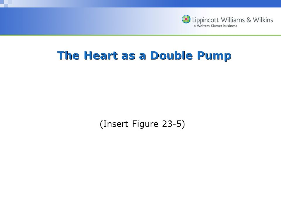 The Heart as a Double Pump (Insert Figure 23-5)