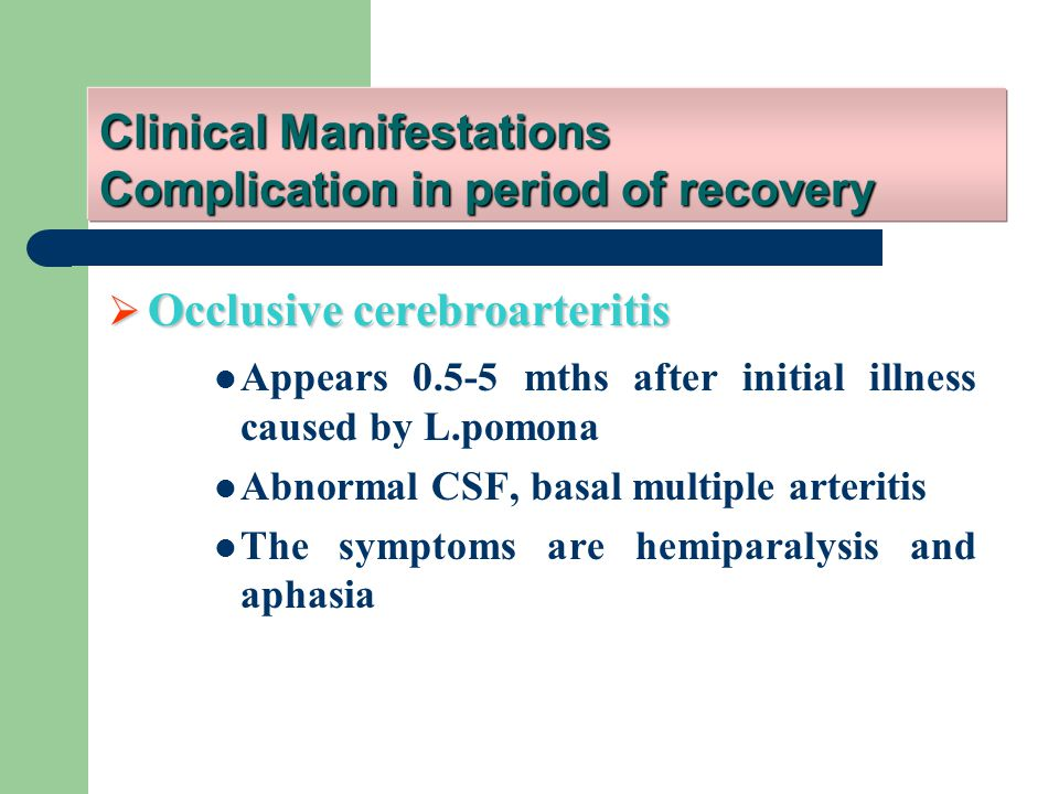  Occlusive cerebroarteritis Appears 0.5-5 mths after initial illness caused by L.pomona Abnormal CSF, basal multiple arteritis The symptoms are hemiparalysis and aphasia Clinical Manifestations Complication in period of recovery