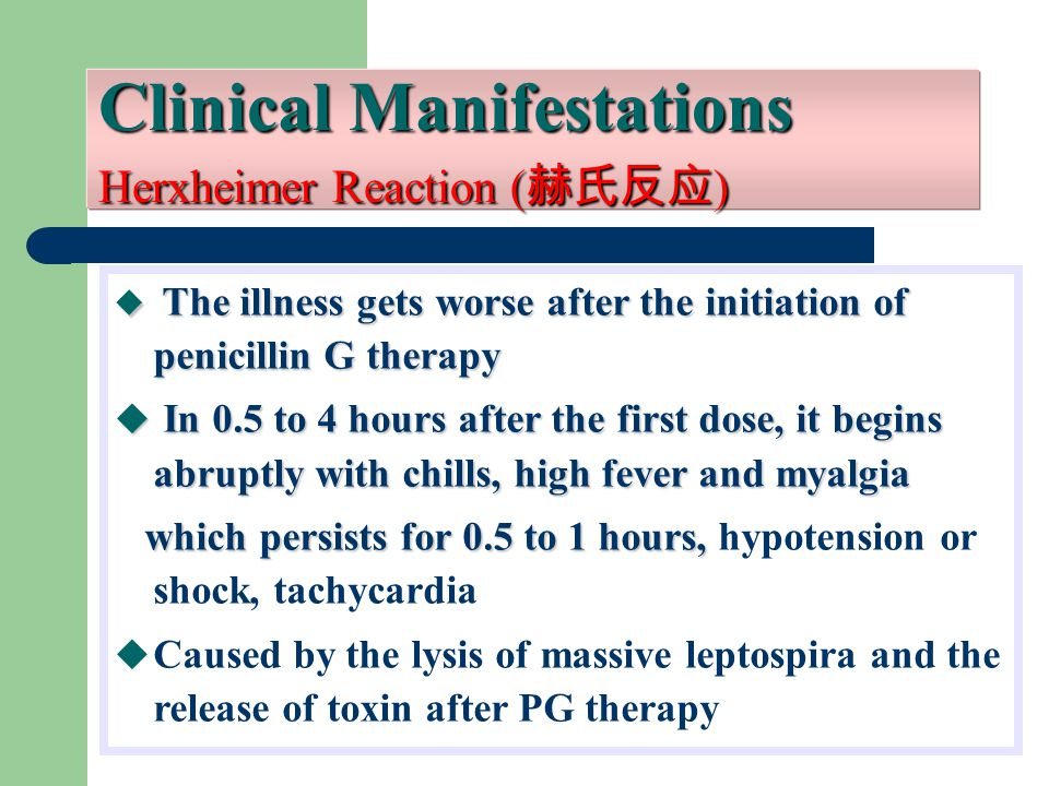Clinical Manifestations Herxheimer Reaction ( 赫氏反应 )  The illness gets worse after the initiation of penicillin G therapy  In 0.5 to 4 hours after the first dose, it begins abruptly with chills, high fever and myalgia which persists for 0.5 to 1 hours, which persists for 0.5 to 1 hours, hypotension or shock, tachycardia  Caused by the lysis of massive leptospira and the release of toxin after PG therapy