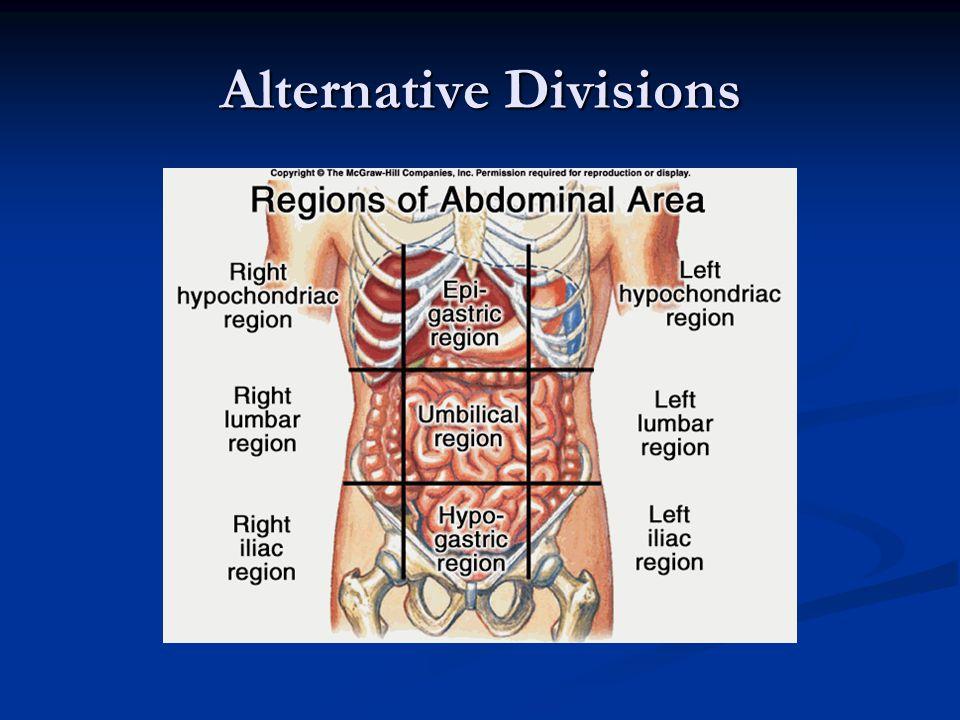 Alternative Divisions