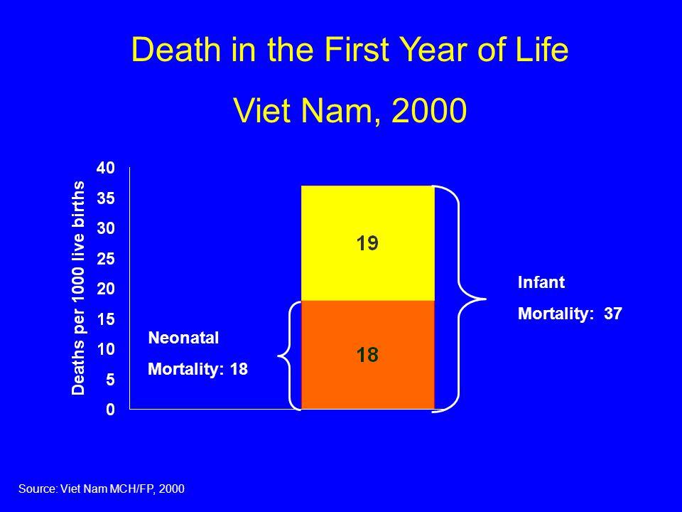 Perinatal and neonatal mortality