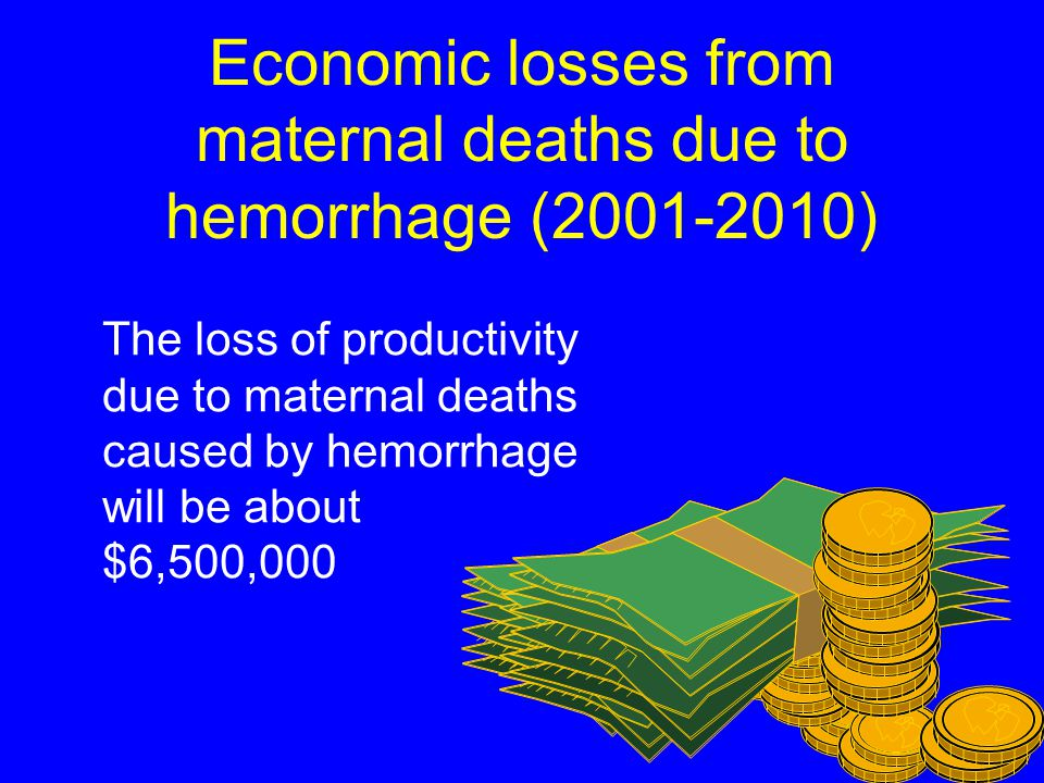 Economic losses from maternal deaths (2001-2010) The loss of productivity due to all maternal deaths will be about $14,000,000 N VN