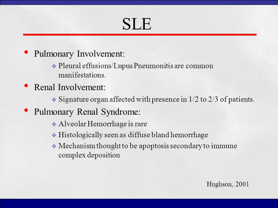 SLE Pulmonary Involvement:  Pleural effusions/Lupus Pneumonitis are common manifestations. Renal Involvement:  Signature organ affected with presenc