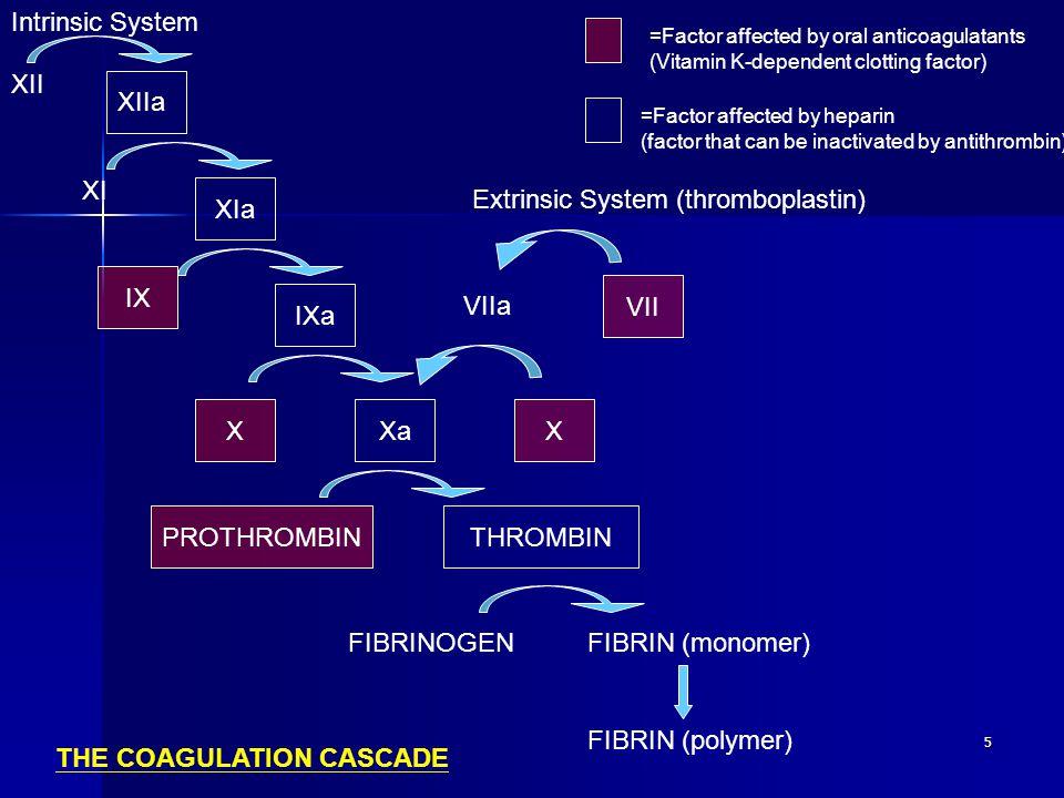 5 XIIa XIa IXa XaX VII THROMBINPROTHROMBIN X IX XII XI FIBRINOGENFIBRIN (monomer) FIBRIN (polymer) VIIa Intrinsic System Extrinsic System (thromboplas