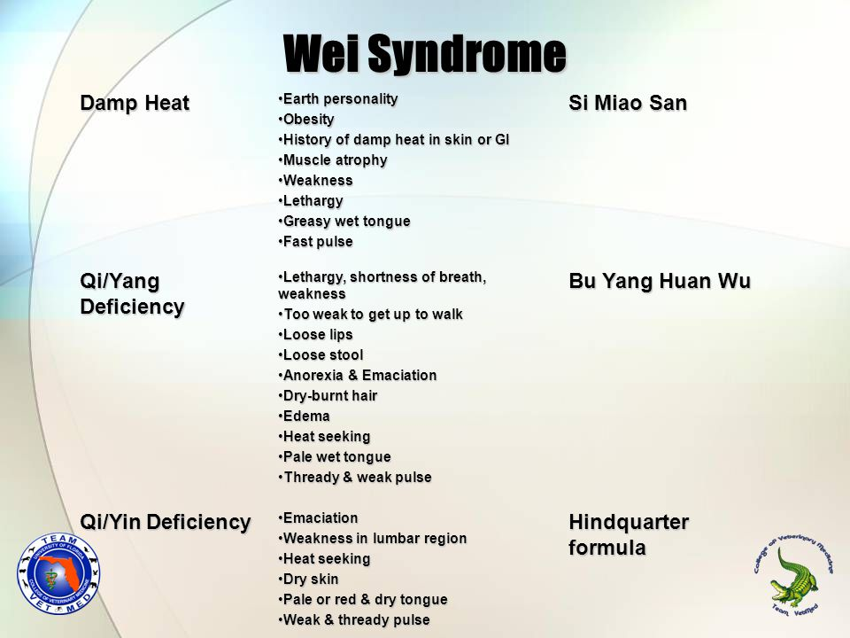 Wei Syndrome Damp Heat Earth personalityEarth personality ObesityObesity History of damp heat in skin or GIHistory of damp heat in skin or GI Muscle atrophyMuscle atrophy WeaknessWeakness LethargyLethargy Greasy wet tongueGreasy wet tongue Fast pulseFast pulse Si Miao San Qi/Yang Deficiency Lethargy, shortness of breath, weaknessLethargy, shortness of breath, weakness Too weak to get up to walkToo weak to get up to walk Loose lipsLoose lips Loose stoolLoose stool Anorexia & EmaciationAnorexia & Emaciation Dry-burnt hairDry-burnt hair EdemaEdema Heat seekingHeat seeking Pale wet tonguePale wet tongue Thready & weak pulseThready & weak pulse Bu Yang Huan Wu Qi/Yin Deficiency EmaciationEmaciation Weakness in lumbar regionWeakness in lumbar region Heat seekingHeat seeking Dry skinDry skin Pale or red & dry tonguePale or red & dry tongue Weak & thready pulseWeak & thready pulse Hindquarter formula