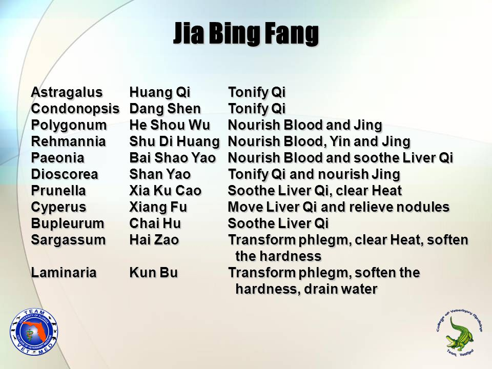 Jia Bing Fang Astragalus Huang Qi Tonify Qi Condonopsis Dang Shen Tonify Qi Polygonum He Shou Wu Nourish Blood and Jing Rehmannia Shu Di Huang Nourish Blood, Yin and Jing Paeonia Bai Shao Yao Nourish Blood and soothe Liver Qi Dioscorea Shan Yao Tonify Qi and nourish Jing Prunella Xia Ku Cao Soothe Liver Qi, clear Heat Cyperus Xiang Fu Move Liver Qi and relieve nodules Bupleurum Chai Hu Soothe Liver Qi Sargassum Hai Zao Transform phlegm, clear Heat, soften the hardness the hardness Laminaria Kun Bu Transform phlegm, soften the hardness, drain water hardness, drain water