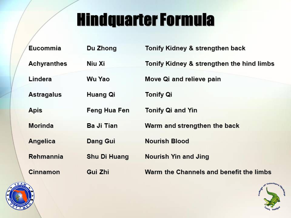 Hindquarter Formula Eucommia Du Zhong Tonify Kidney & strengthen back AchyranthesNiu Xi Tonify Kidney & strengthen the hind limbs Lindera Wu Yao Move Qi and relieve pain Astragalus Huang Qi Tonify Qi Apis Feng Hua Fen Tonify Qi and Yin Morinda Ba Ji Tian Warm and strengthen the back Angelica Dang Gui Nourish Blood Rehmannia Shu Di Huang Nourish Yin and Jing Cinnamon Gui Zhi Warm the Channels and benefit the limbs