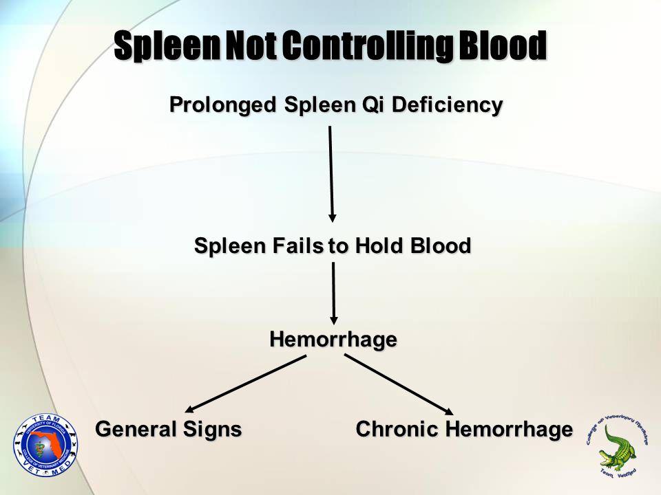 Darby SignalmentSignalment 5 yr FS Doberman5 yr FS Doberman HistoryHistory Generalized weaknessGeneralized weakness EcchymosisEcchymosis Abdominal bleedingAbdominal bleeding TCVM ExamTCVM Exam Tongue: paleTongue: pale Pulses: deep & weakPulses: deep & weak Dx: Spleen Qi Deficiency (not holding blood in vessels)