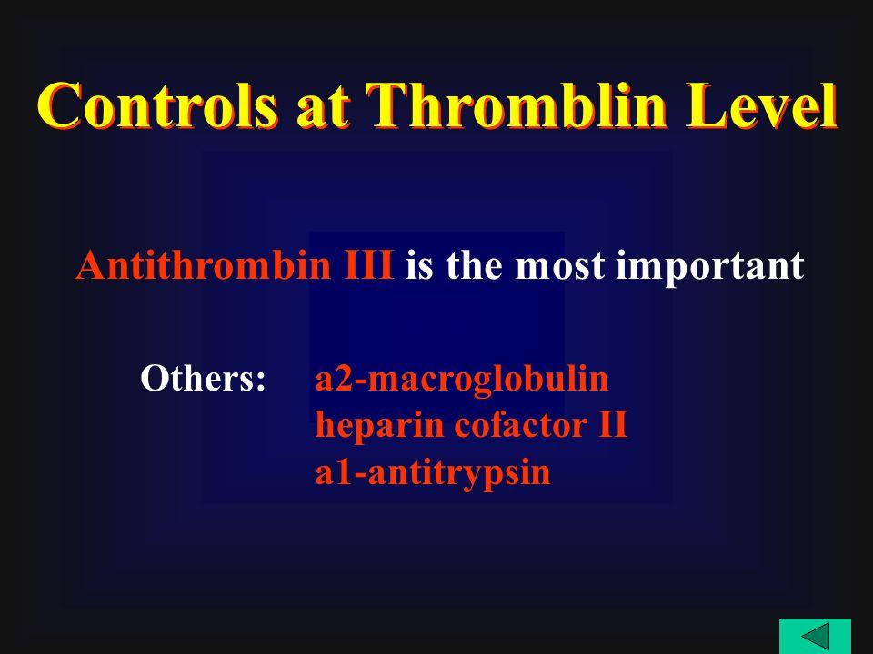 Antithrombin III is the most important a2-macroglobulin heparin cofactor II a1-antitrypsin Controls at Thromblin Level Others: