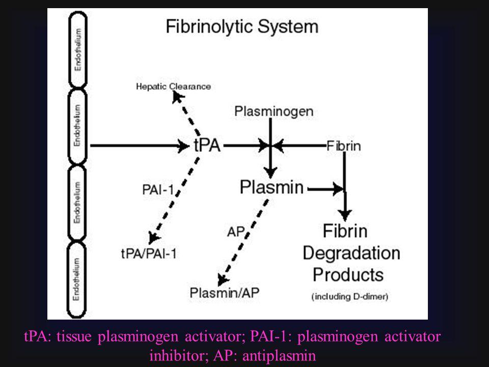 tPA: tissue plasminogen activator; PAI-1: plasminogen activator inhibitor; AP: antiplasmin