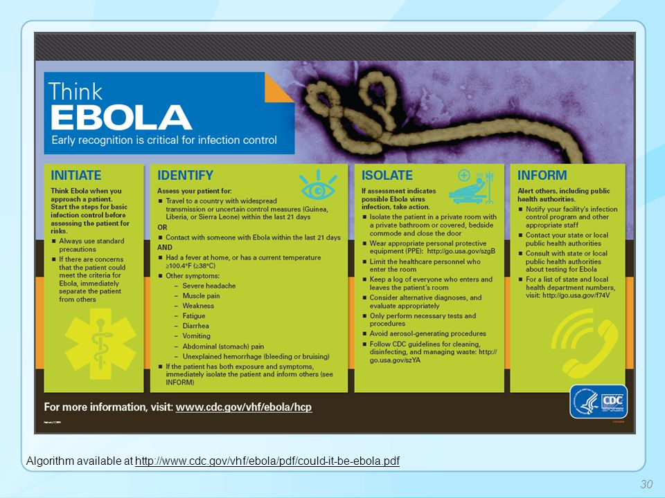 Algorithm available at http://www.cdc.gov/vhf/ebola/pdf/could-it-be-ebola.pdfhttp://www.cdc.gov/vhf/ebola/pdf/could-it-be-ebola.pdf 30
