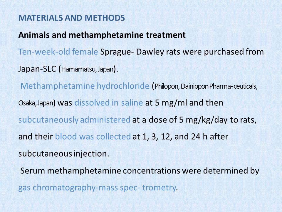The brain hemorrhage reported among human amphetamines abusers ( Moriya & Hashimoto 2002; Inamasu et al.