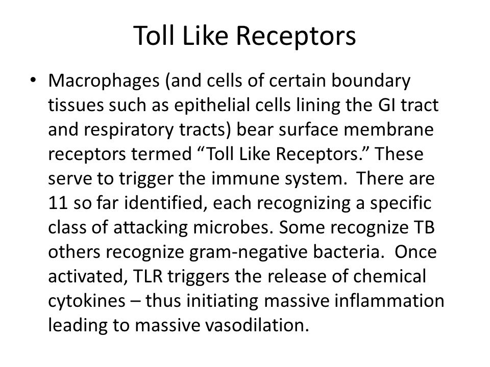 Toll Like Receptors Macrophages (and cells of certain boundary tissues such as epithelial cells lining the GI tract and respiratory tracts) bear surfa