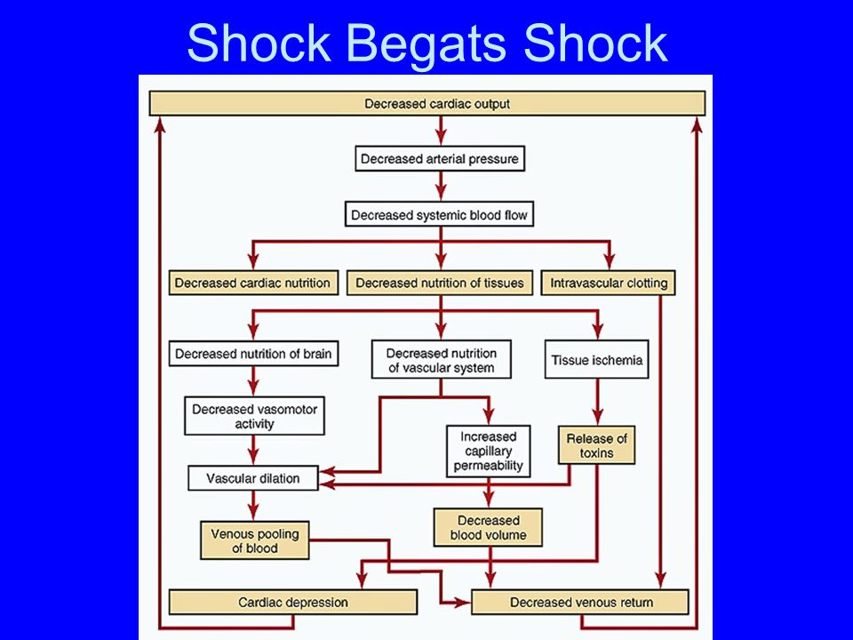 Shock Begats Shock
