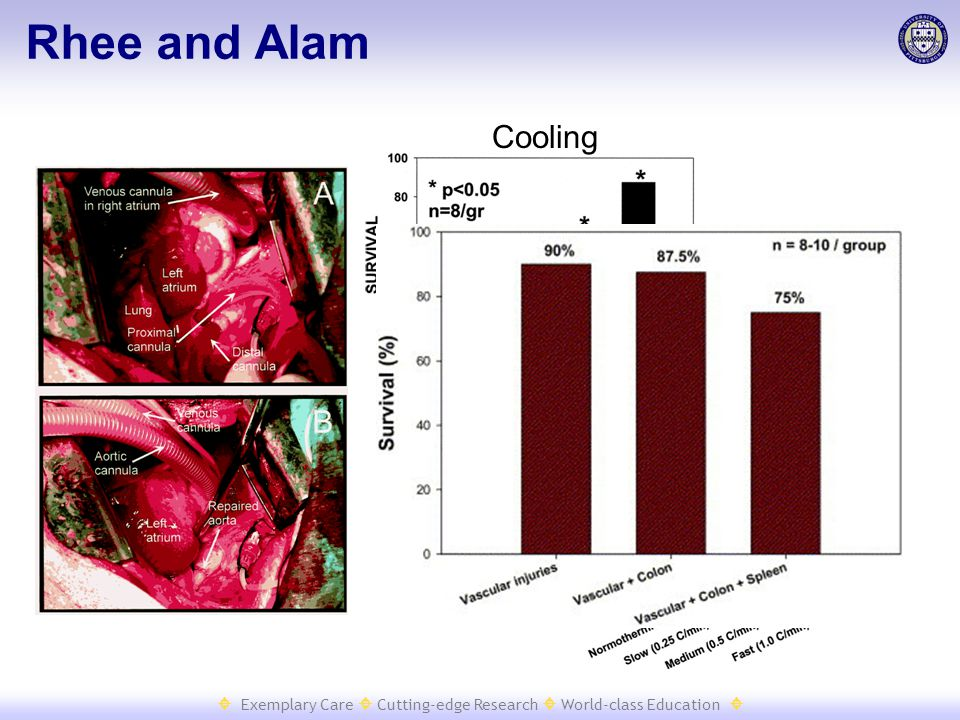  Exemplary Care  Cutting-edge Research  World-class Education  Rhee and Alam Cooling Rewarming