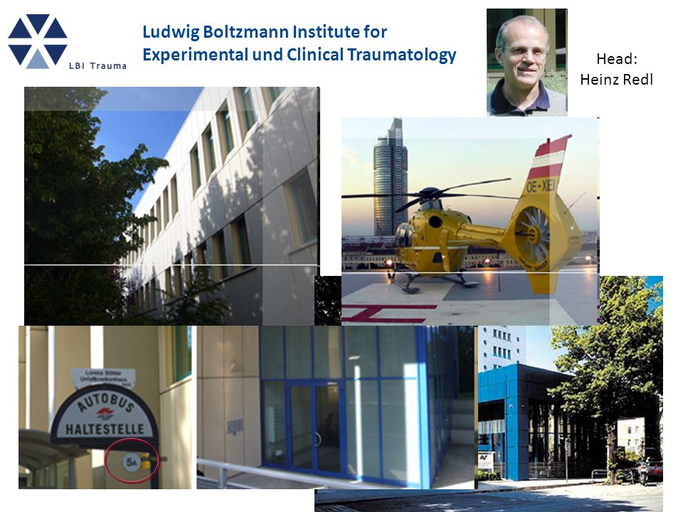 Ludwig Boltzmann Institute for Experimental und Clinical Traumatology Head: Heinz Redl
