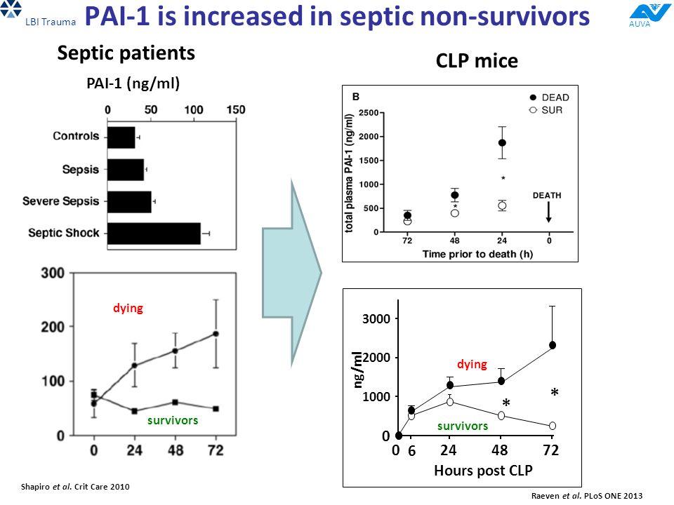 PAI-1 is increased in septic non-survivors Shapiro et al.