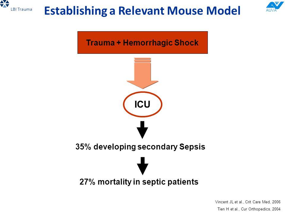 AUVA Establishing a Relevant Mouse Model LBI Trauma Vincent JL et al., Crit Care Med, 2006 Tien H et al., Cur Orthopedics, 2004 ICU 35% developing secondary Sepsis 27% mortality in septic patients Trauma + Hemorrhagic Shock