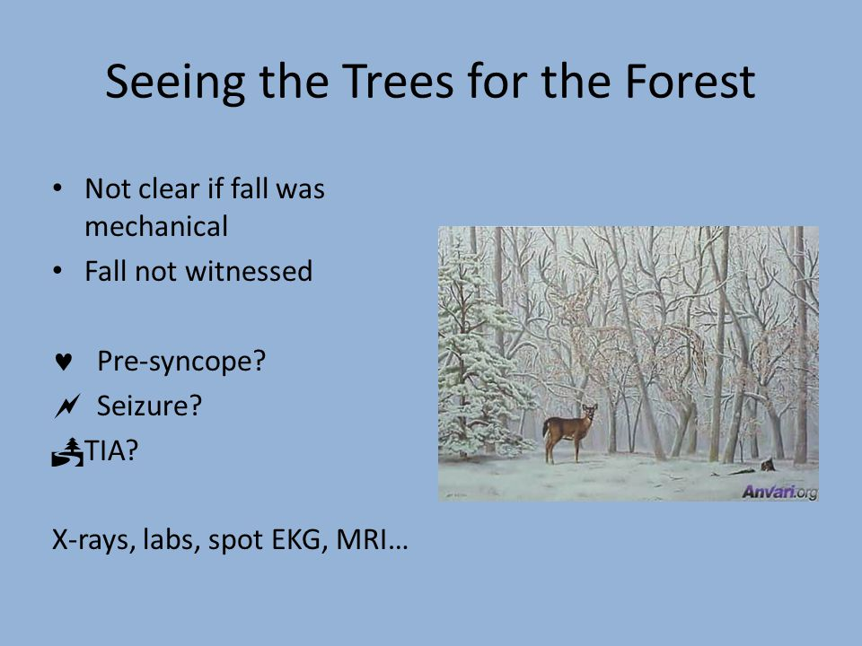 Seeing the Trees for the Forest Not clear if fall was mechanical Fall not witnessed Pre-syncope?  Seizure?  TIA? X-rays, labs, spot EKG, MRI…