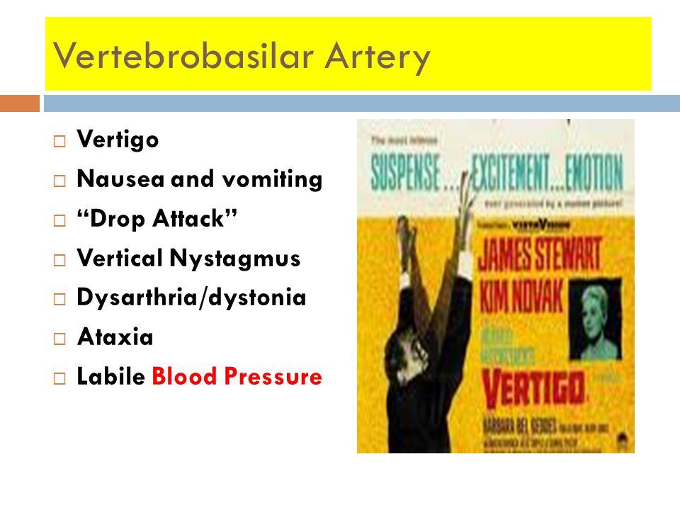"Vertebrobasilar Artery  Vertigo  Nausea and vomiting  ""Drop Attack""  Vertical Nystagmus  Dysarthria/dystonia  Ataxia  Labile Blood Pressure"